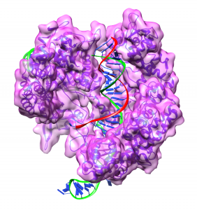 CRISPR_CAS9_1