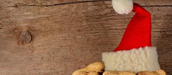 Santa Claus Science Rudolf