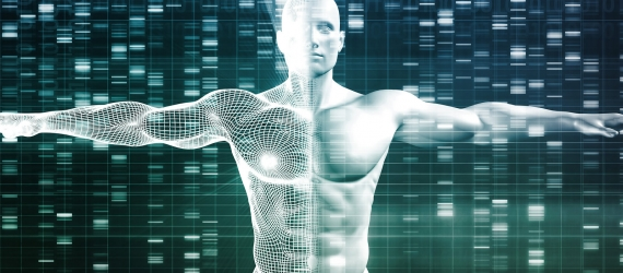 Discoveries human genome