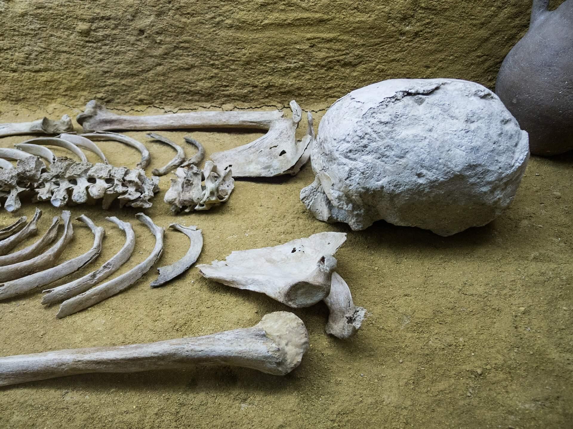 Skeleton bones on the floor of a burial site