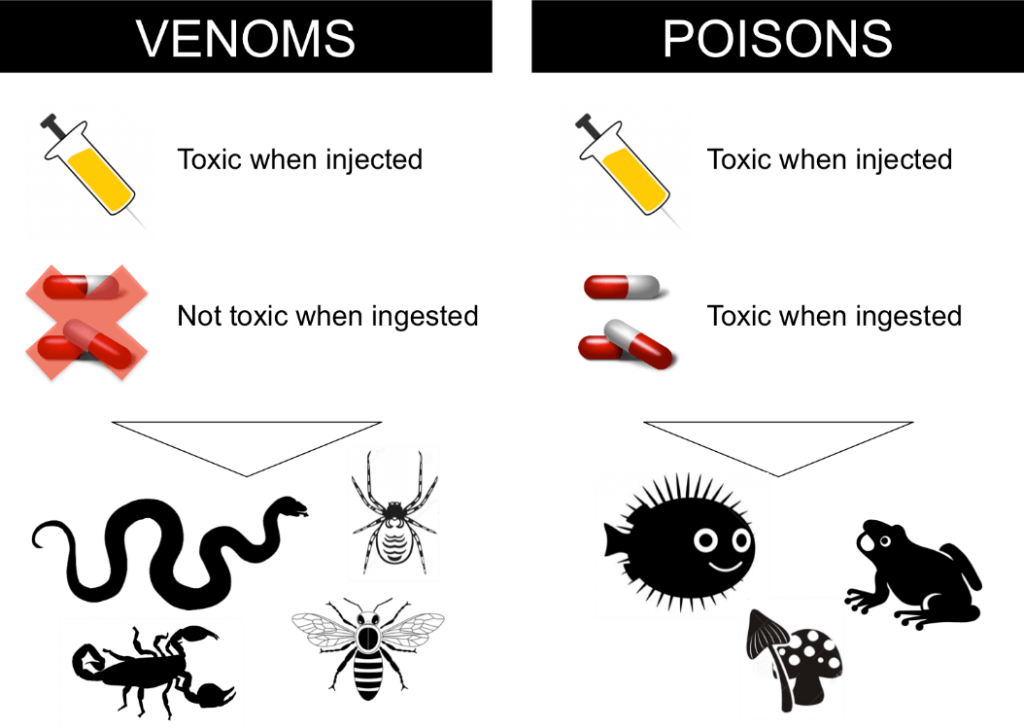 Chart comparing venom and poisons